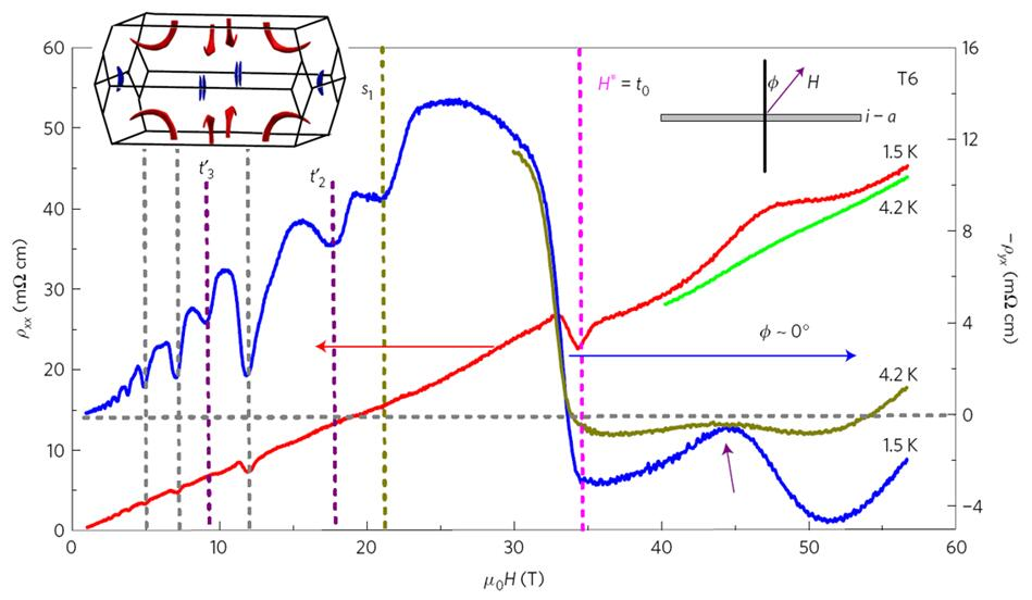 Magnetic-tunnelling-induced Weyl node annihilation in TaP