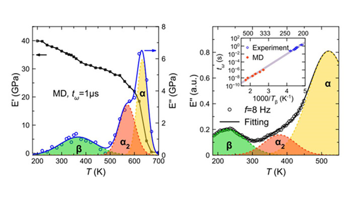 Predicting complex relaxation processes in metallic glass